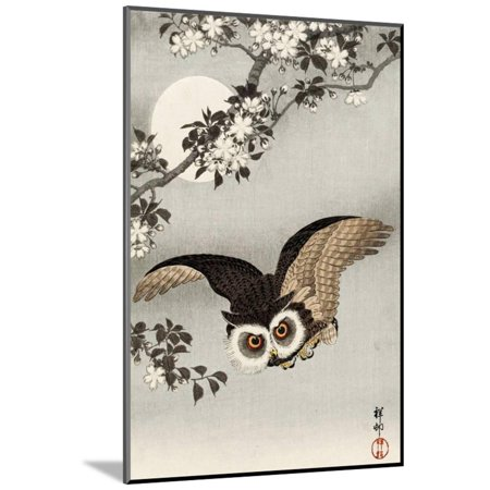 Scops Owl Flying under Cherry Blossoms Wood Mounted Print Wall Art By Koson Ohara