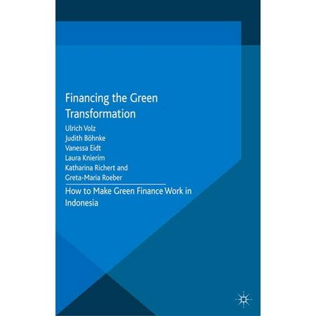 Financing the Green Transformation - eBook