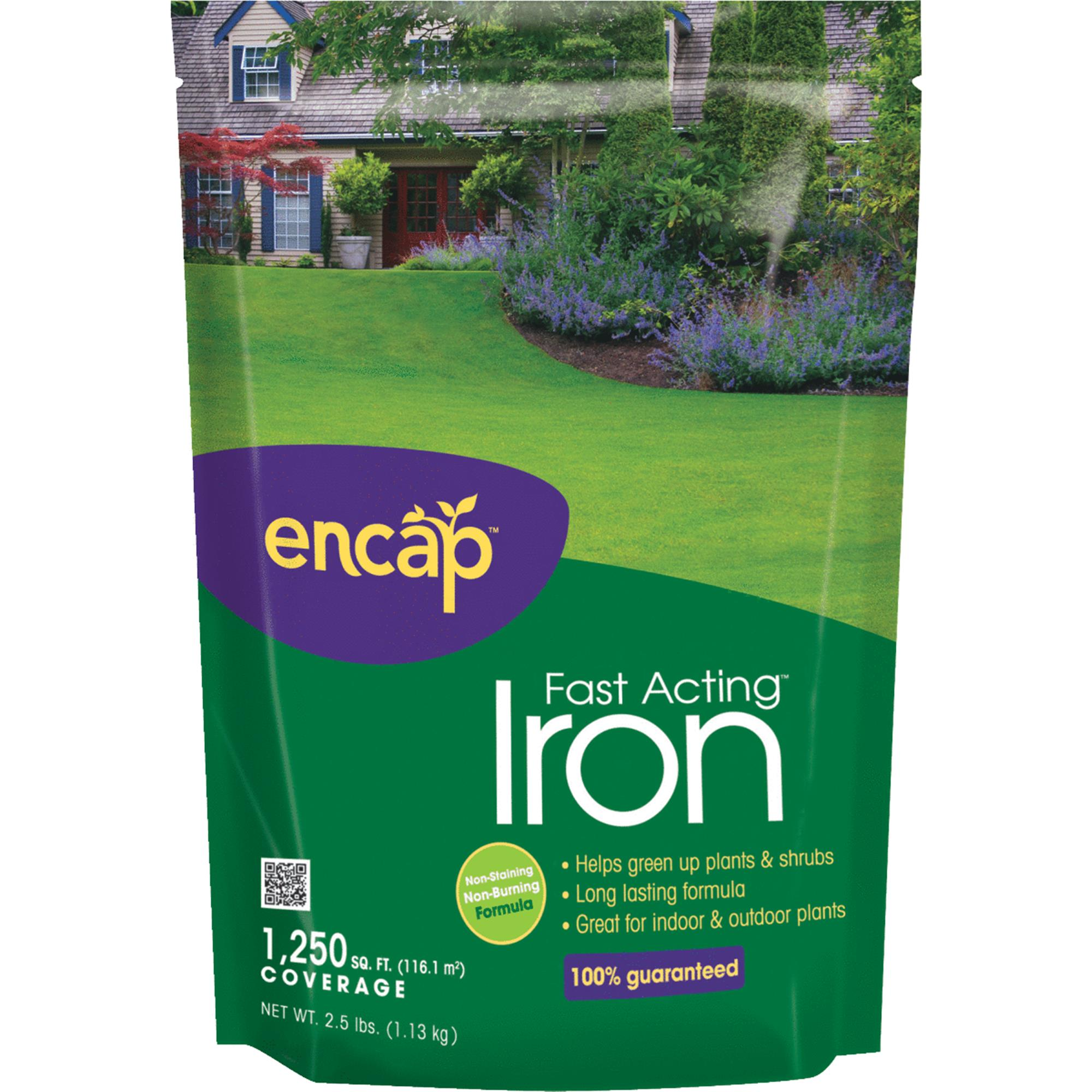 Encap Fast Acting Iron, 2.5lbs (1250sq ft Coverage)