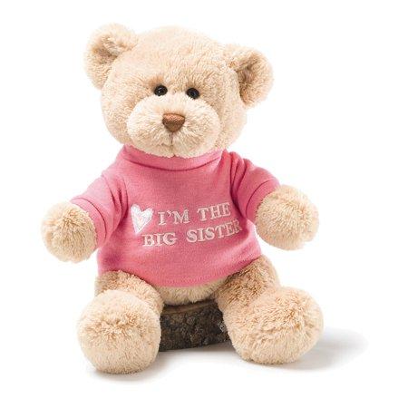 Gund I'm The Big Sister Plush Bear Big Sister Bear