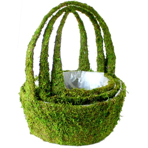 SuperMoss Real Moss Hanging Planter Set (Set of 6)