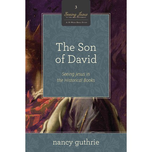 The Son of David: Seeing Jesus in the Historical Books: a 10-week Study