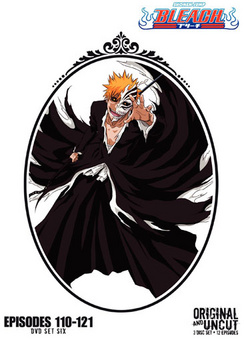 Bleach Box Set 6 (DVD) by WARNER HOME VIDEO