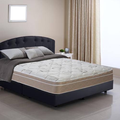 Wolf Mattress Wolf Posture Premier Luxury Pillowtop Full-size Mattress