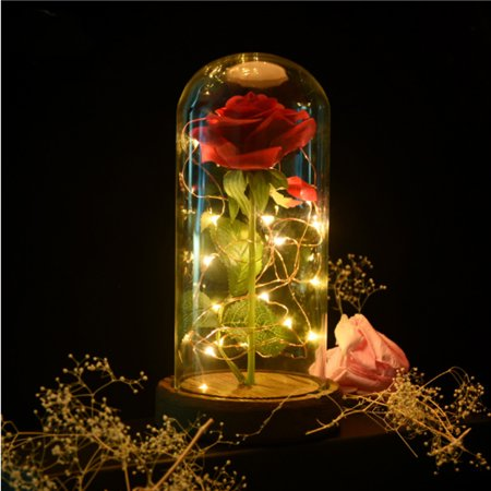 Valentine's Day Beauty And Enchanted Preserved Fresh Red Rose The Beast Glass Cover + LED Light Unique Gifts