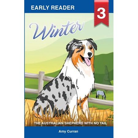 Winter the Australian Shepherd with No Tail