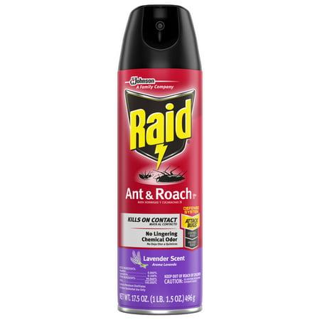 Ant Killer Gel (Raid Ant & Roach Killer 26, Lavender Scent, 17.5)