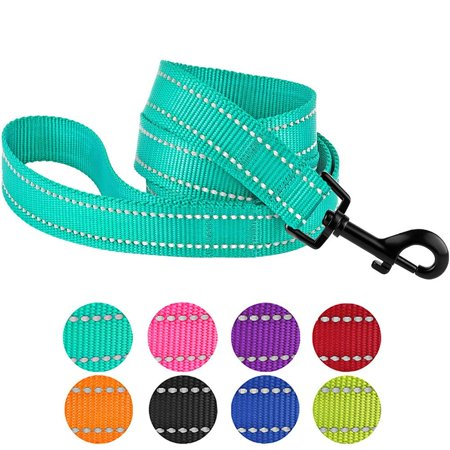 Single Thick Nylon Leash (Reflective Dog Leash Safety Nylon Leashes for Medium Dogs Heavy Duty Lead, Mint Green )