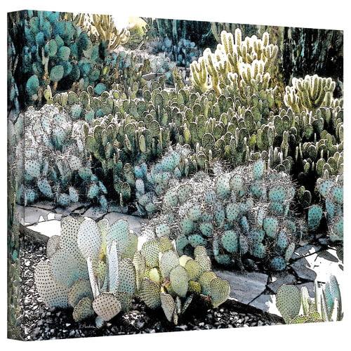 ArtWall ''Desert Botanical Garden'' by Linda Parker Photographic Print on Canvas
