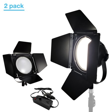 Loadstone Studio 2 Packs of Video Studio Dimmable LED Barndoor Continuous Light Kit with Carry Case, Neutral Day Light Tone 5500K, Photo Studio, WMLS4655 Dimmable Studio Light Kit