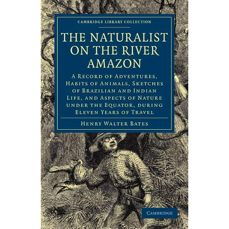 Cambridge Library Collection - Zoology: The Naturalist on the River Amazon : A Record of Adventures, Habits of Animals, Sketches of Brazilian and Indian Life, and Aspects of Nature Under the Equator, During Eleven Years of Travel (Edition 3) (Paperback)