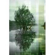 Parvez Taj Reflective Art Print On Premium Canvas