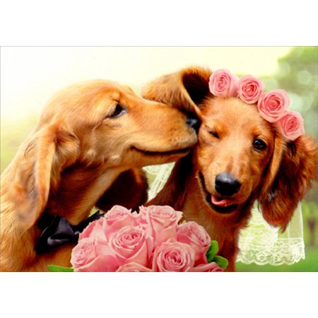 Avanti Press Dog Groom Kissing Dog Bride Wedding Card