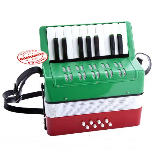 D'Luca Kids Piano Accordion 17 Keys 8 Bass RWG by D'Luca