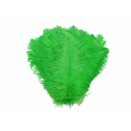 1 2 Lb   14 17   Light Green Ostrich Large Drab Wholesale Feathers  Bulk  Swa