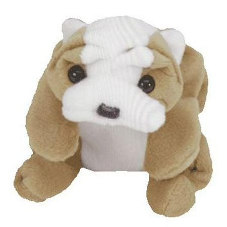 TY Beanie Baby - WRINKLES the Bull Dog (8 inch)