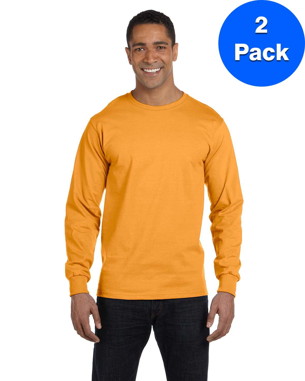 Hanes Mens 2 Pack Long Sleeve Beefy-T