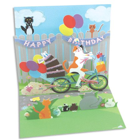 Up With Paper Cat & Cake Bike Ride Pop-Up Birthday Card