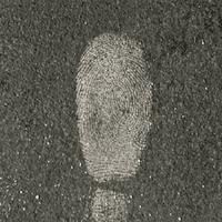 Forensics Source 1-0081 Fingerprint Powder, White - 1-0081 - Armor Forensics