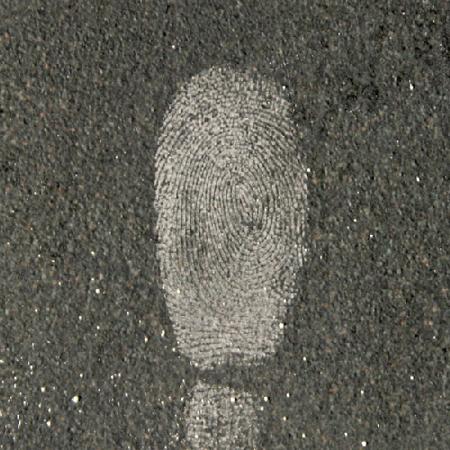Forensics Source 1-0081 Fingerprint Powder, White - 1-0081 - Armor - Fingerprint Powder