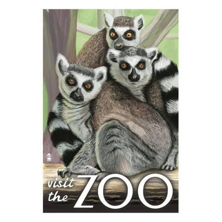 Visit the Zoo, Ring Tailed Lemurs Print By Lantern Press - Animal Print Paper Lanterns