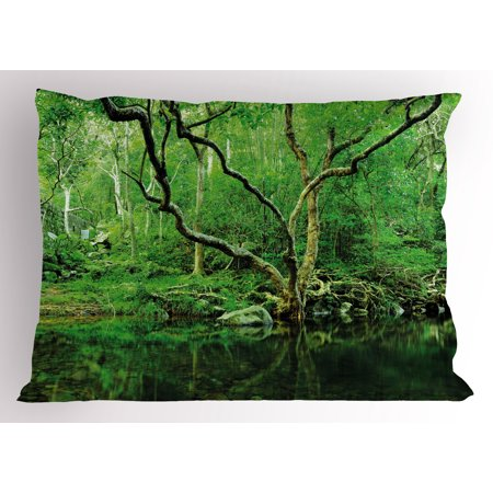 Green Pillow Sham Forest Moss Leaves Nature Themed Isolated Jungle Image Photo Print, Decorative Standard Size Printed Pillowcase, 26 X 20 Inches, Dark Brown and Forest Green, by Ambesonne