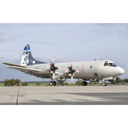 Beja Air Base Portugal - A Portuguese Air Force P-3C CUP Orion assigned to ESQ-601 received a special paint scheme on the tail fin to celebrate the squadrons 25th anniversary Poster Print