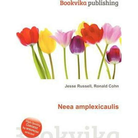 Neea Amplexicaulis - image 1 de 1
