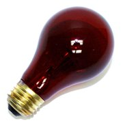 Halco 101155 - A19RED40T Standard Transparent Colored Light Bulb