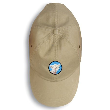 Chinese Crested Baseball Cap LH9392BU-156