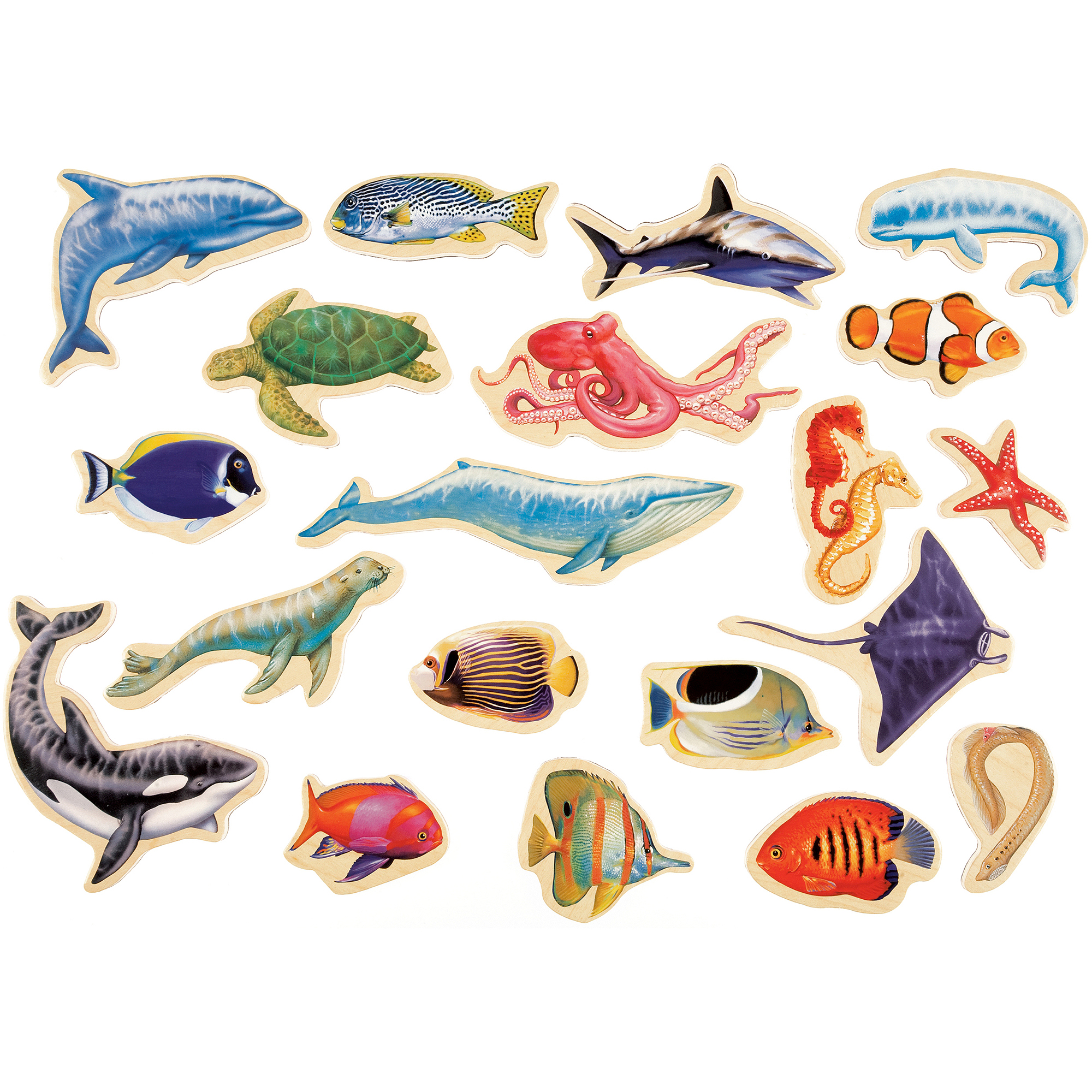 t s shure sea creatures wooden magnets magnafun set 20 pieces t s shure sea creatures wooden magnets magnafun set 20 pieces walmart com