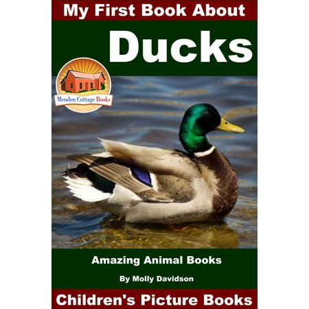My First Book About Ducks: Amazing Animal Books - Children's Picture Books - (1st Duck)