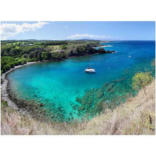 "Trademark Fine Art ""Honolua Bay"" Canvas Art by Pierre Leclerc"
