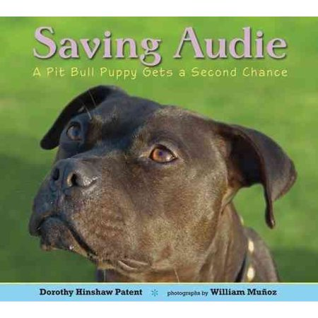 Saving Audie : A Pit Bull Puppy Gets a Second (Best Way To Get A Puppy)