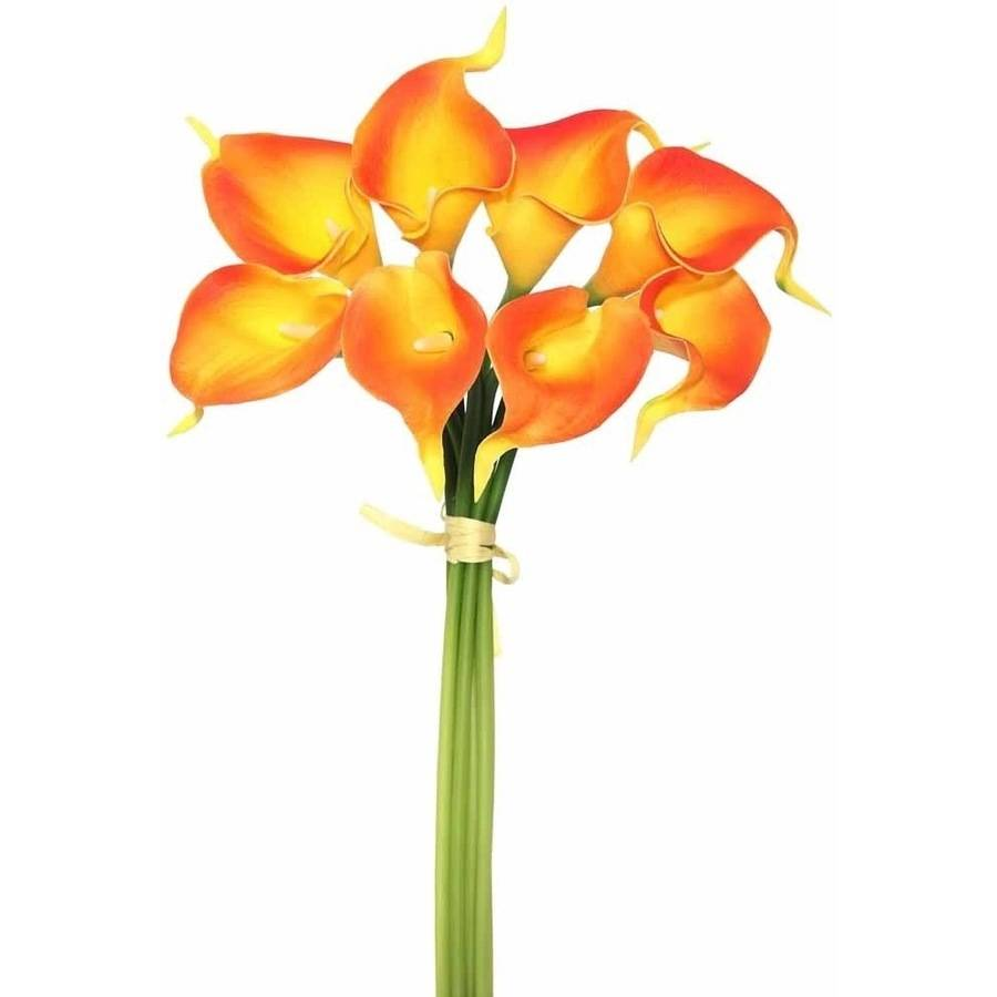 "Vickerman 14"" Artificial Orange Calla Lily Bundle Featuring 8 Beautiful Blooms"