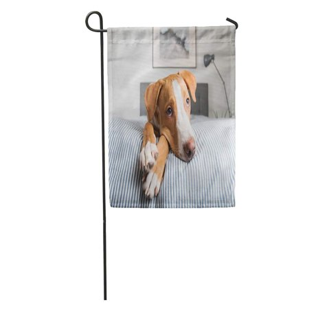 SIDONKU Gray Young Fawn Mixed Breed Puppy Laying on Striped Tan Garden Flag Decorative Flag House Banner 12x18