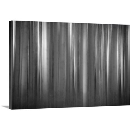 Great Big Canvas Dan Ballard Premium Thick Wrap Canvas Entitled Aspen Form