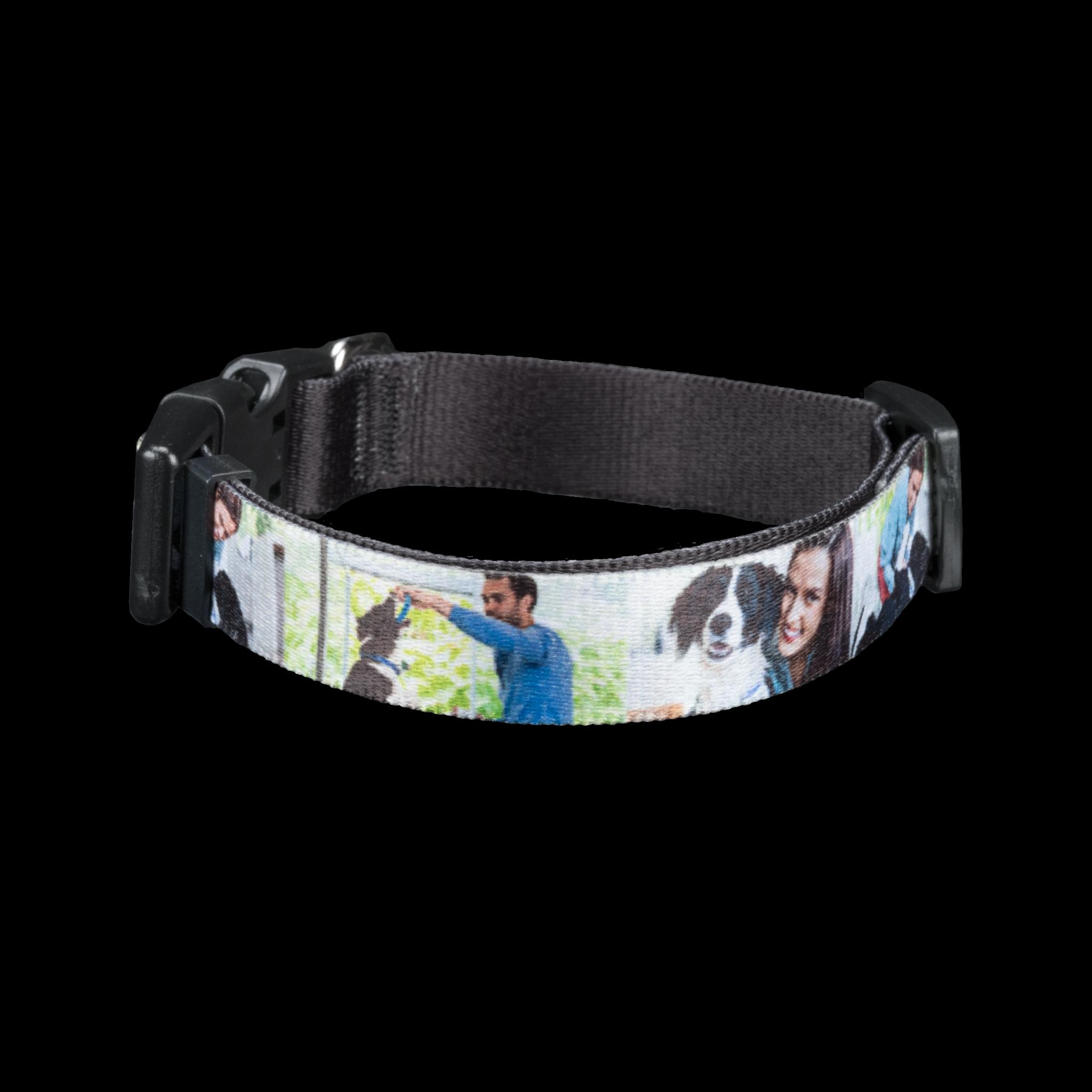 Pet Photo Collar, Small