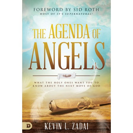 The Agenda of Angels : What the Holy Ones Want You to Know About the Next (Us Citizen Wants To Move To Canada)