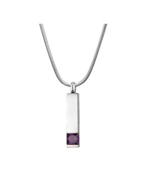 Cremation Jewelry Memorial Birthstone Bar Necklace Handcrafted Waterproof Human Ashes Urn Container with Free Funnel Kit and Velvet Jewelry Box [Jan]
