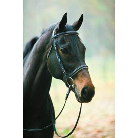 Pony Dressage Bridle - Henri De Rivel Dressage Bridle with Web Reins