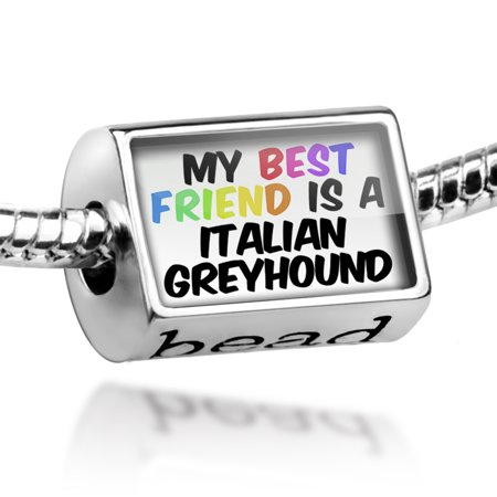 Bead My best Friend a Italian Greyhound Dog from Italy Charm Fits All European