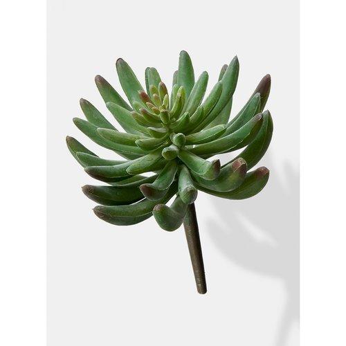 Bungalow Rose Artificial Finger Desktop Succulent Pick Plant