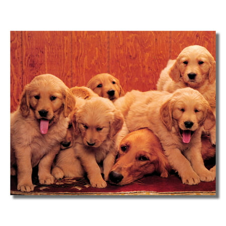 Golden Retriever Dog Mother with Puppies Photo Wall Picture 8x10 Art Print - Golden Retriever Puppy Photo