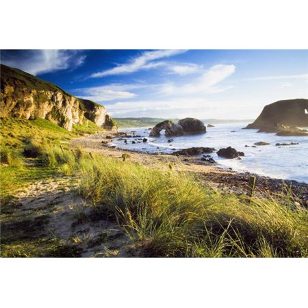 Posterazzi Dpi1825633large Ballintoy County Antrim Ireland   Beach Scenic Poster Print By The Irish Image Collection  44  36 X 24   Large