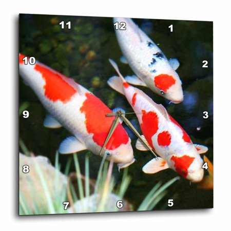 3drose japanese orange n white koi fish wall clock 15 by for Whiting fish at walmart