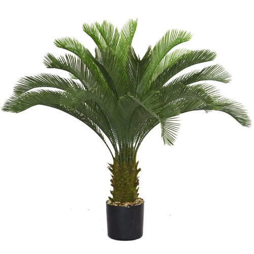 Wildon Home  Cycas Palm Tree