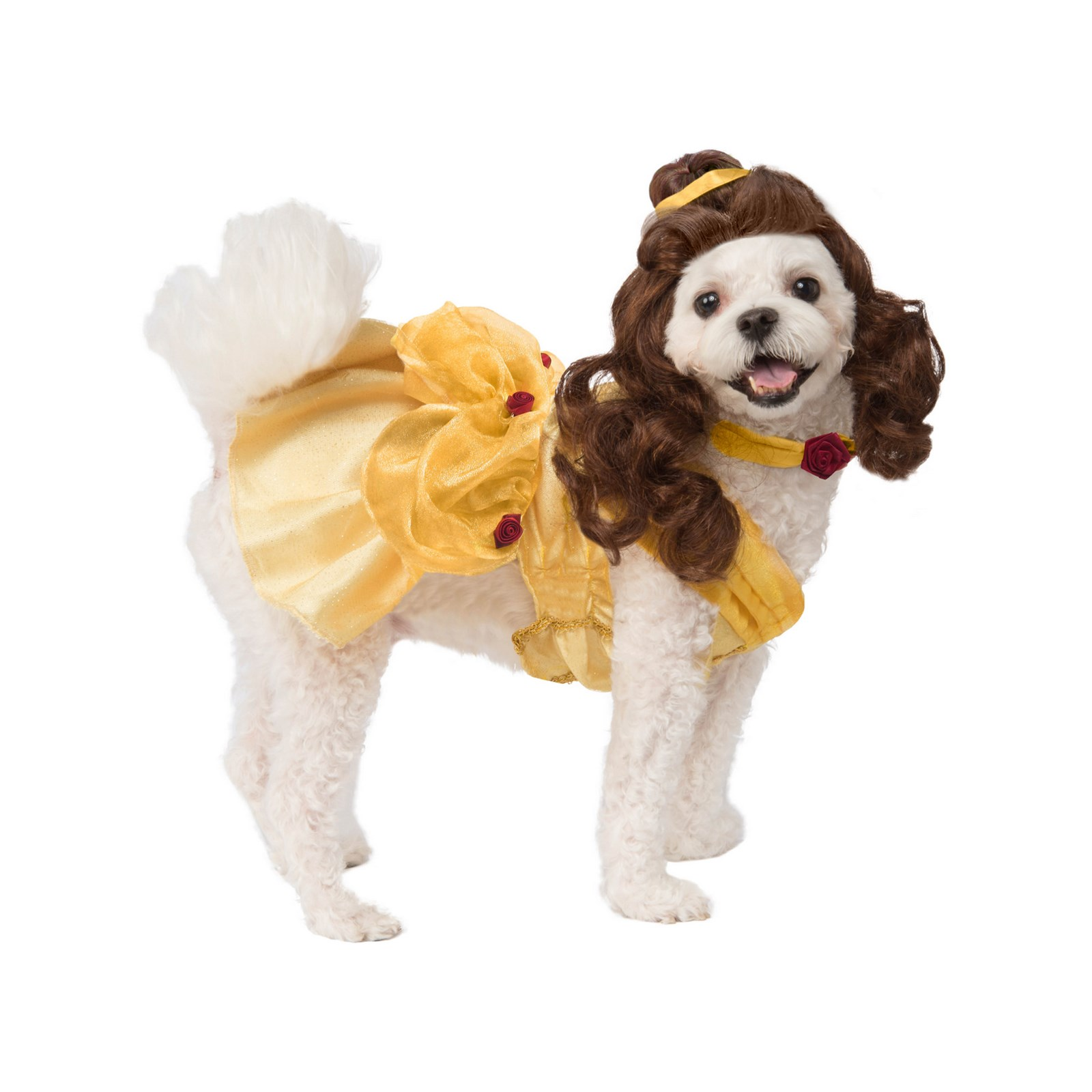 Beauty and the Beast Belle Pet Costume