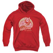 Hagar The Horrible Hagar Circle Big Boys Pullover Hoodie