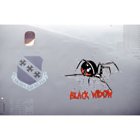 LAMINATED POSTER Nose art Black Widow, on B-1B Lancer bomber, a back-up aircraft for the four bombers of the 9th Bo Poster Print 24 x 36